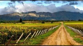 La situación del mercado inmobiliario rural: entrevista con Adrián Barbero