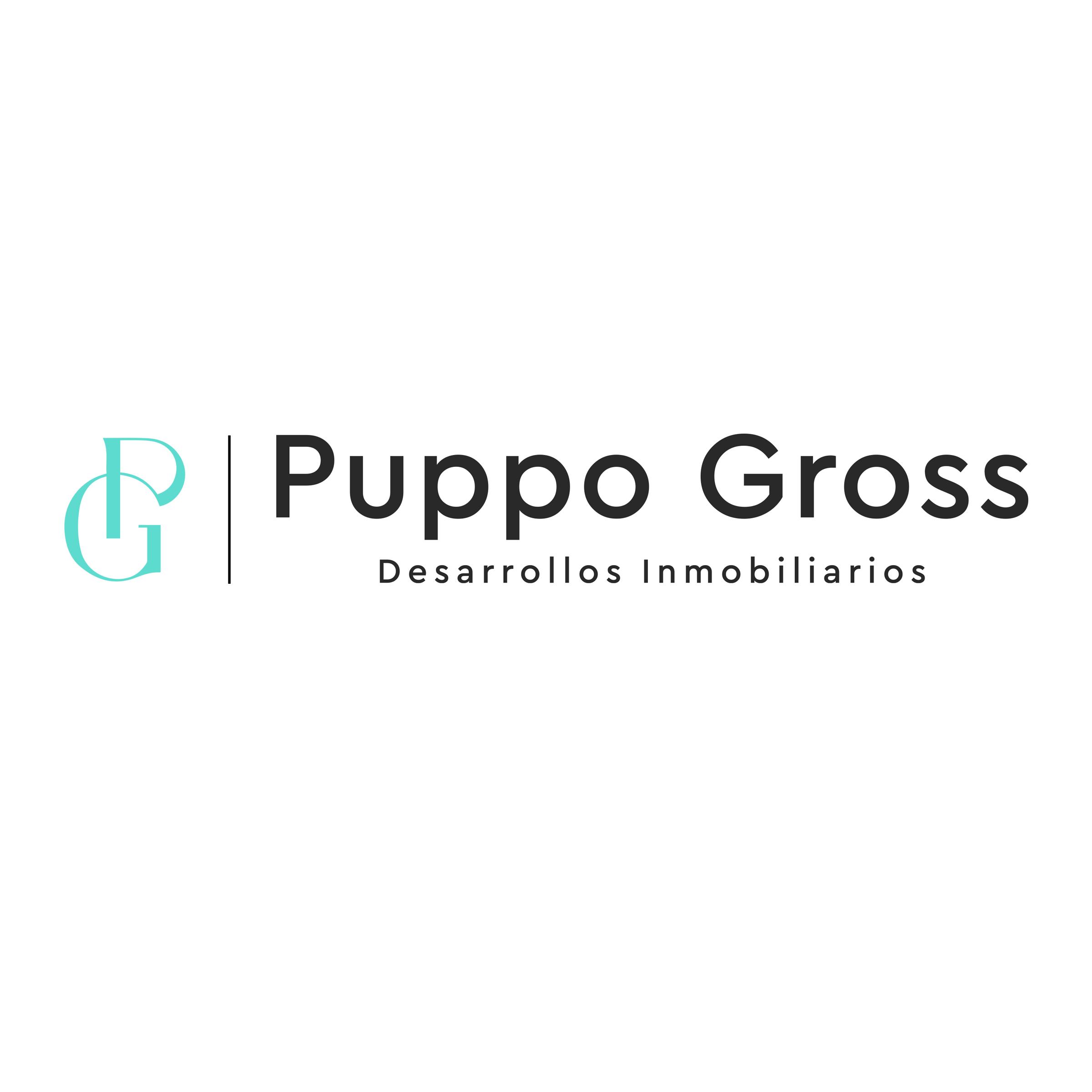 Puppo Gross Desarrollos Inmobiliarios