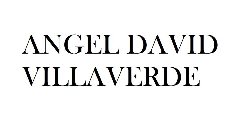ANGEL DAVID VILLAVERDE