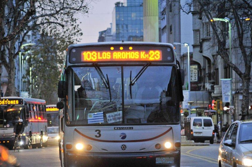 Nuevos recorridos de ómnibus en Montevideo