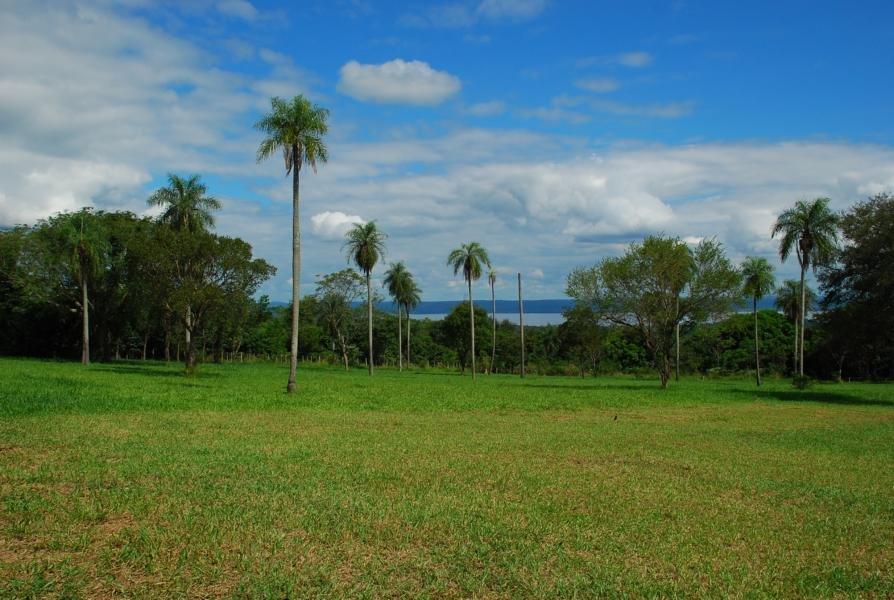 Vendo Una Hermosa Casa Quinta En Samber A 2 Km. De La Ruta Adfaltada,co Linda Vista Al Lago