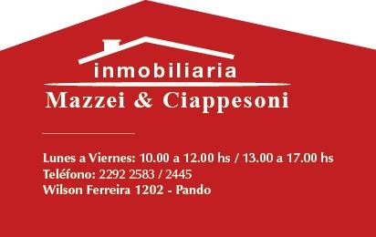 Mazzei & Ciappesoni