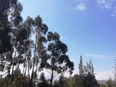 Hermoso Terreno En Condominio Cerrado En Las Lomas Del Sol