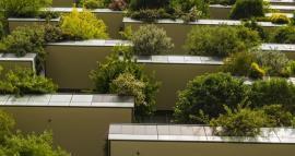 Arquitectura eco-friendly en Paraguay