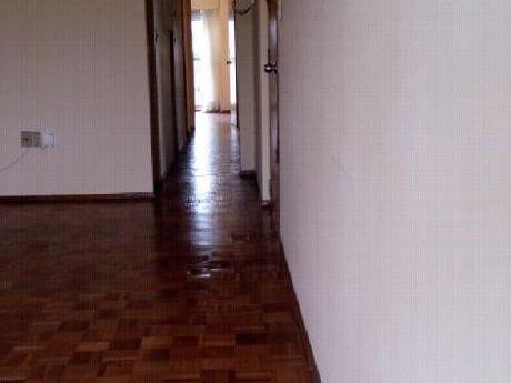 Alquila Apartamento Pocitos 70m