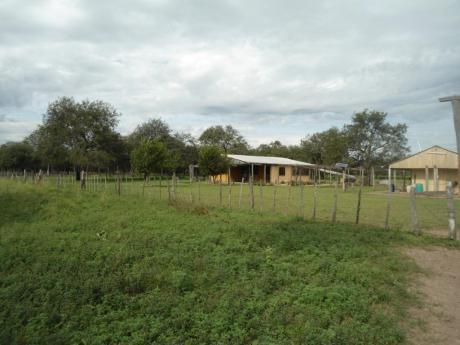 Vendo Campo De 3.500 Has - Chaco Paraguayo