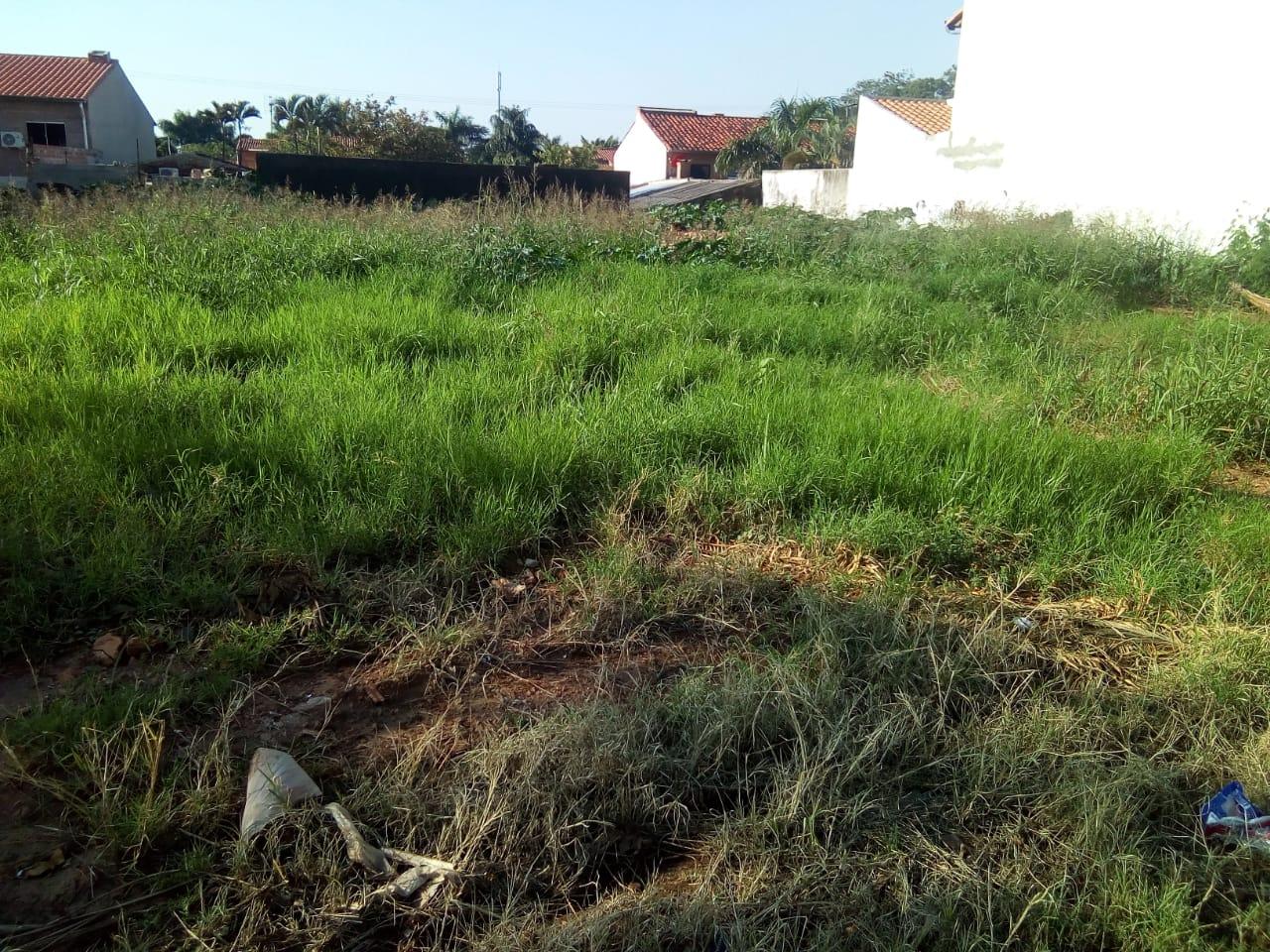 Hermosos Terrenos Zona Residencial