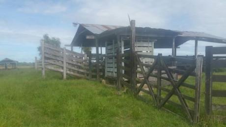 Ofertazoo.. 275 Hectáreas En Roque Gonzalez, Paraguarí Para Ganadería