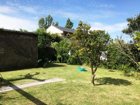 Punta Gorda, Casa Zona Colegios