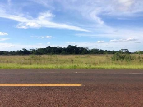 Terreno Sobre Ruta Asfaltada En Gral Aquino (san Pedro)