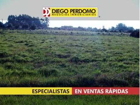 Chacra De 41.636m² En Venta, Montevideo.