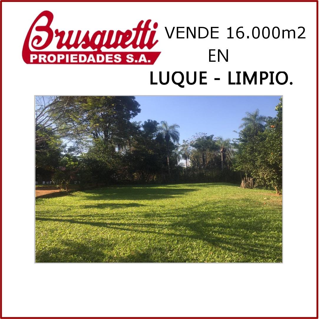 Vendo 16.000m2 En Luque - Limpio.