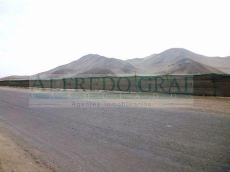 Terreno Industrial Venta Panamericana Sur Km. 68 - Zona Calanguillo Bajo - Balneario Las Salinas - Chilca