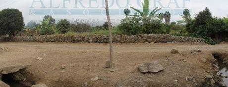 Terreno Agricola Venta Av. Libertad - Urb. San Antonio - Mala