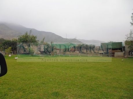 Terreno Agricola Venta Rinconada De Mala - Urb. Rinconada - Mala