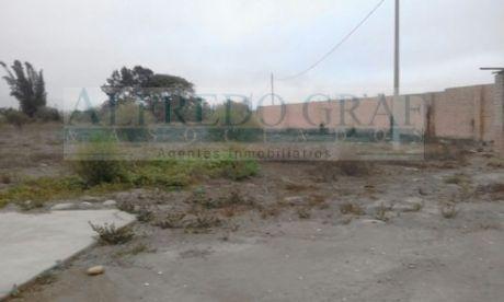 Terreno Agricola Venta Valle Chancay - Sector Boza - Urb. Aucallama - Huaral