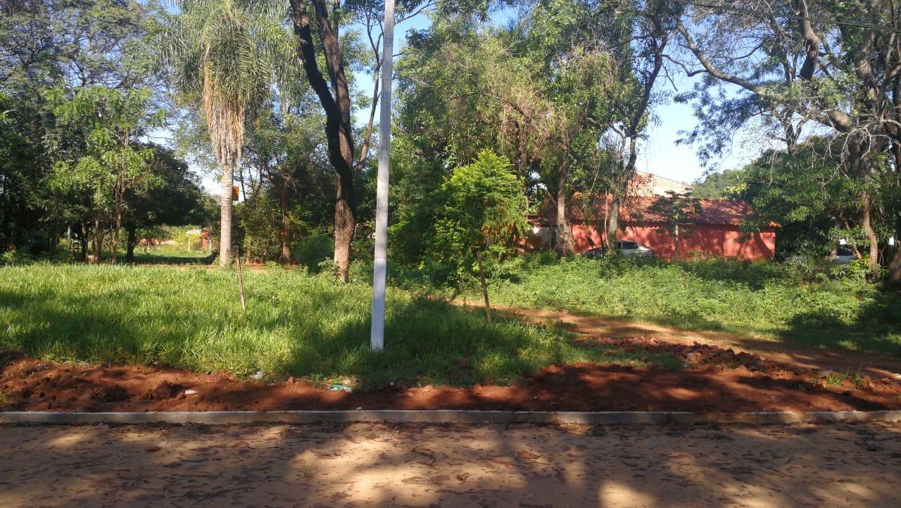 Vendo Terrenos En San Lorenzo Barrio Laurelty