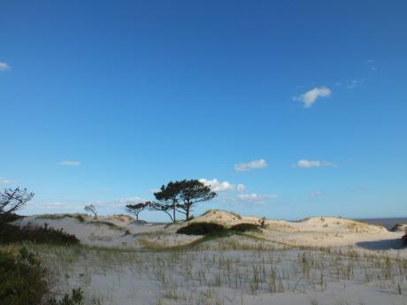 Excelente Terreno Frente  Al Mar
