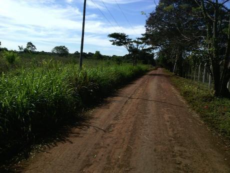 Vendo Terreno De 8.500 M2 En San Juan Del Parana - Itapua
