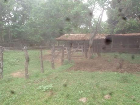 Campo De 162 Hectareas A 2km De Ruta 1