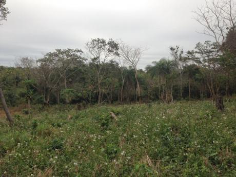3.2 Hectáreas 1 Terreno En Venta | Urubó - Zona La Rinconada