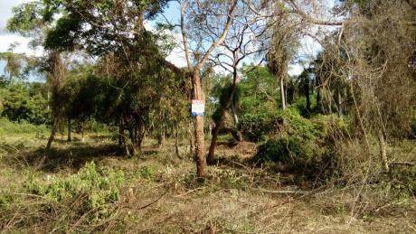 Se Vende Terrenos En Zona Alterra Luque