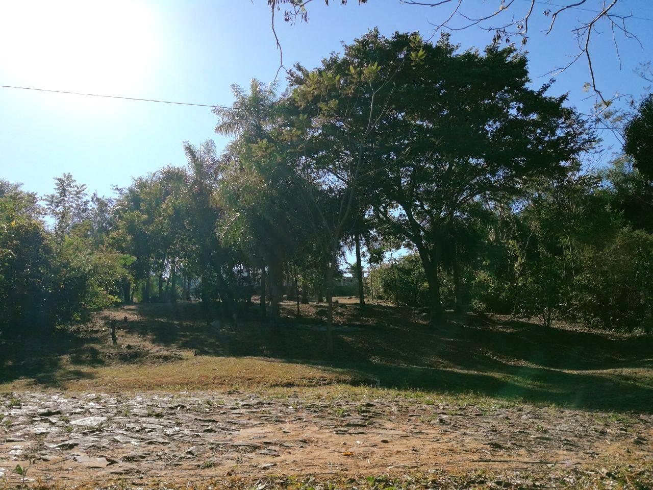 Venta De Terreno En Esquina En San Ber De 463,17m2