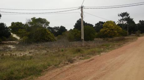 Gran  Terreno En Punta Pinares