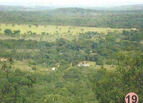 Ytu Guazu, Pura Naturaleza, Con 500 M Del Arroyo Ytu Cruzando La Finca