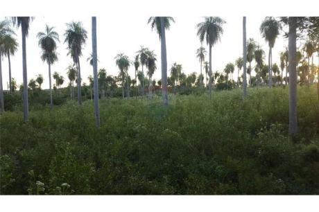 Vendo Terreno En Altos Cñia Acuña