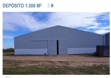 Depòsitos Industriales, Terreno Y Proyecto Polo 101
