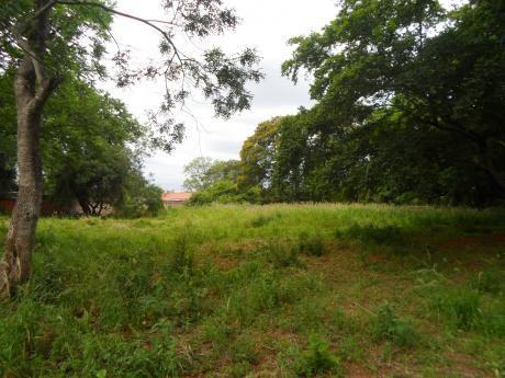 Terreno En La Ciudad De Luque – Barrio Laurelty