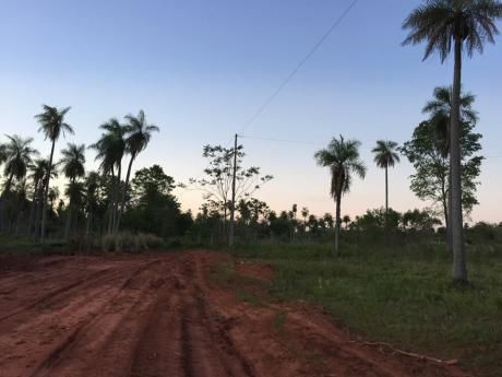 Campo En Yaguarón Apto Para Cultivo Y Ganaderia