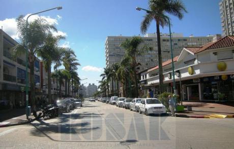 Kosak Punta Del Este- óptima Inversión C/renta - Locales  Excelente Ubicación