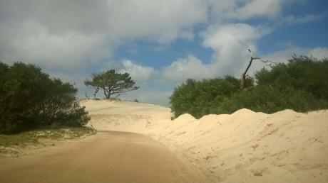 Espectacular Terreno Frente Al Mar Y Las Dunas