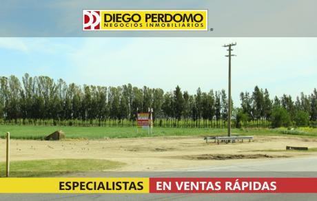 Campo En Venta En San José