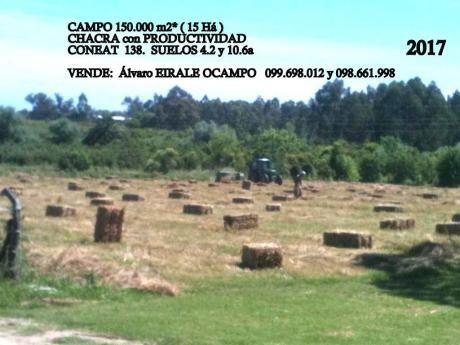 U124217 450.000= Montevideo Chacra 150.000 M2*