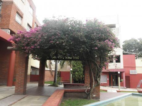 Apto.2 Dormitorios, Dúplex, Con Garaje, Para Entrar Prado