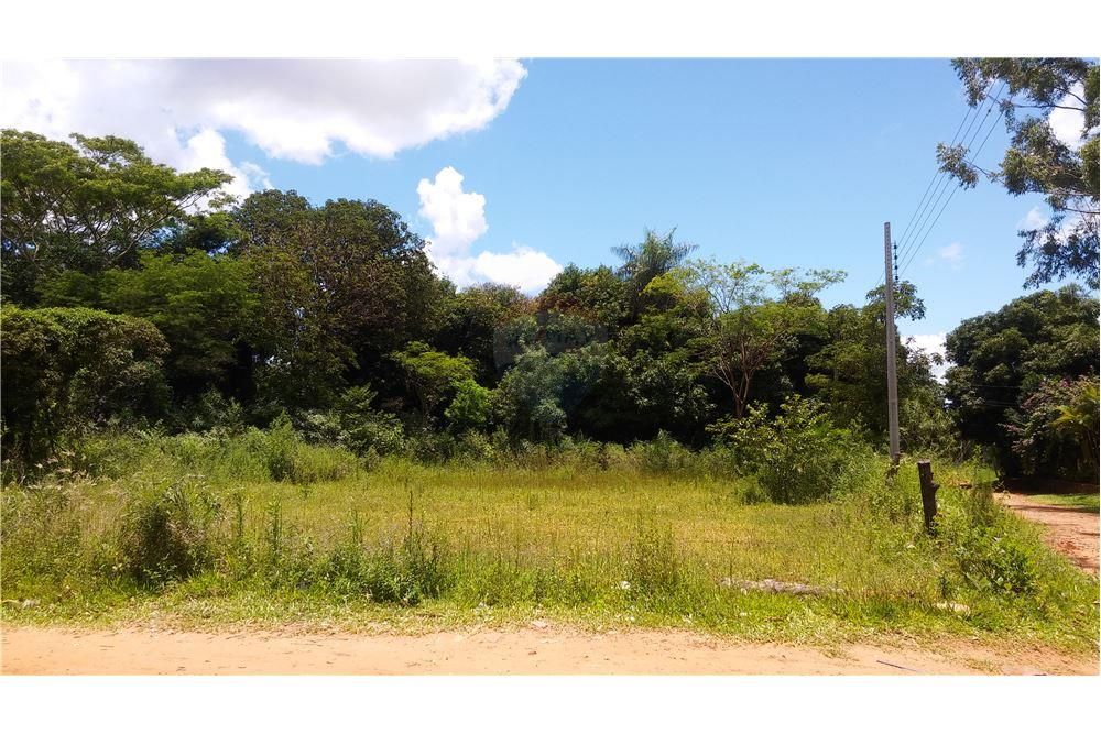 Gran Terreno En Isla Aveiro Limpio
