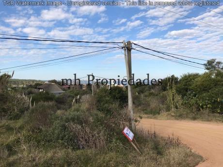 Espectacular Terreno En Punta Ballena