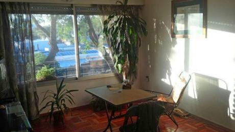 Luminoso Apartamento En Zona Impasa