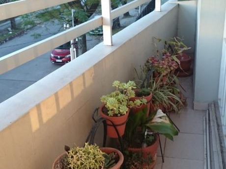 Apartamento, 2 Dorm. Terraza Parque Batlle, La Blanqueada