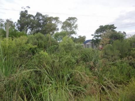 Venta De Terreno En Parque Del Plata Norte 0e0te122pp