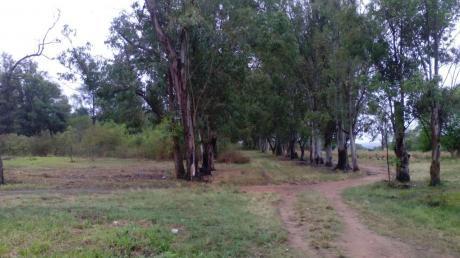 Vendo 4 Terrenos Juntos En Ypakarai A Una Cuadra De La Ruta II Mcal Estigarribia