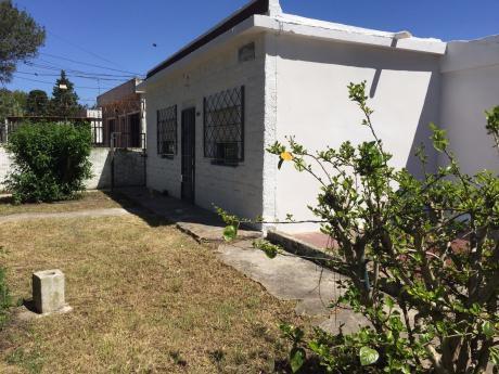 Alquiler Casa Malvin Norte Delgado Y Rambla ConcepciÓn Del Uruguay