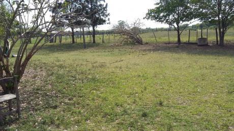 Vendo Campo De 3.600 Hectareas - Chaco Paraguayo
