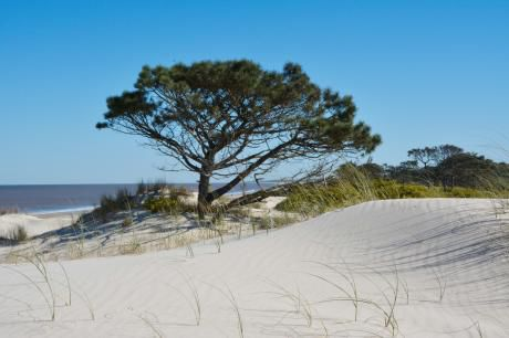 Lindo Terreno Frente Al Mar
