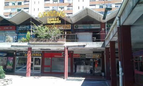Oficina Sosa - Locales Y Depósito Alquilados En Parque Posadas