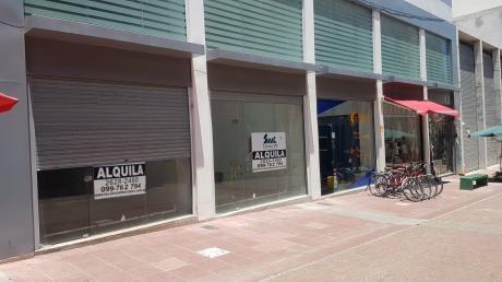Local Comercial Alquiler En Peatonal Piedras. Ciudad Vieja.