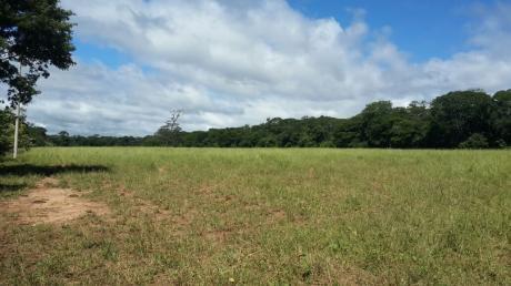 Hermosa Propiedad Agricola-ganadera En Cabezas